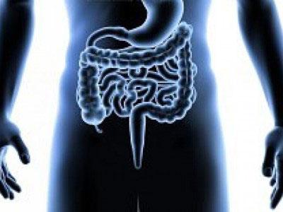 009-digestivo