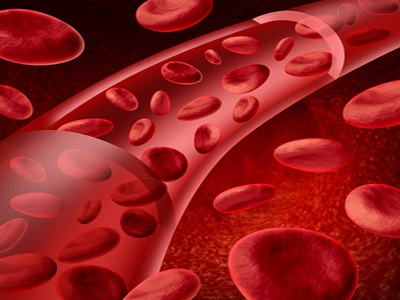 Red blood cells flowing in a vein and artery medical symbol